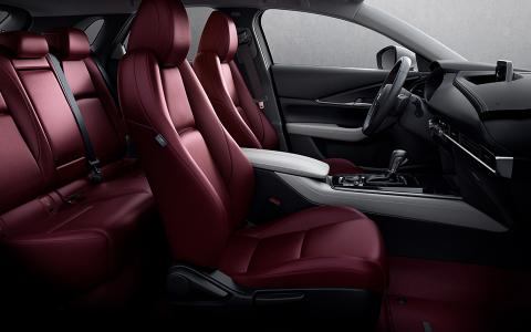 Mazda CX-30 100th Anniversary interior